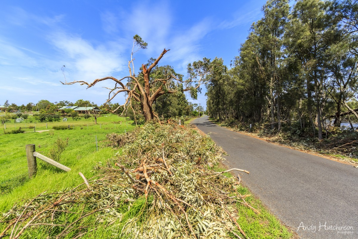 Moving away from Mount Coolangatta the tornado continued to fling farm machinery in all directions before wiping out trees on the edge of Back Forest Road which runs alongside Broughton Creek.