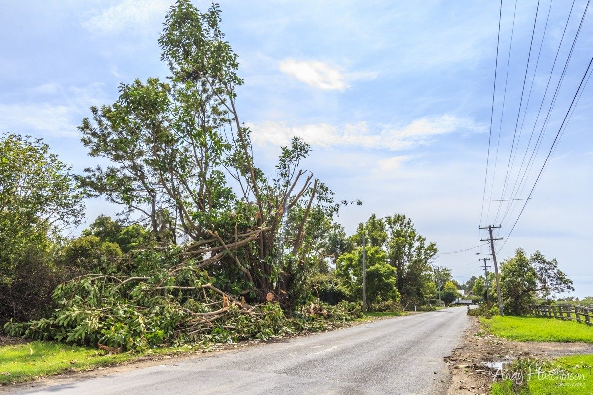 Homes and farms line this road in Terrara. Some were nearly wiped off the planet, some were totally untouched. The tornado's power seems to have risen and fallen as it moved inland.