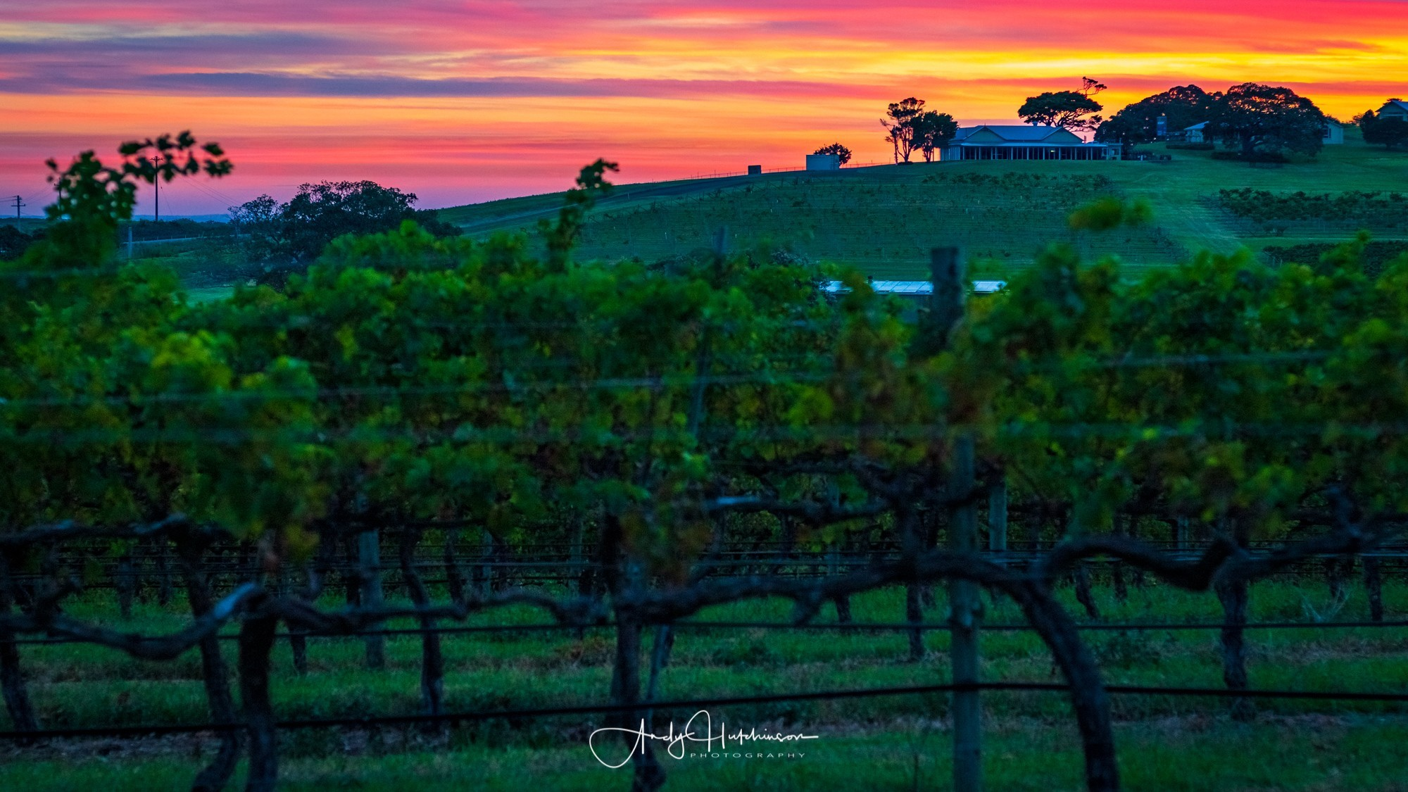 Last Days of Summer at Crooked River Wines