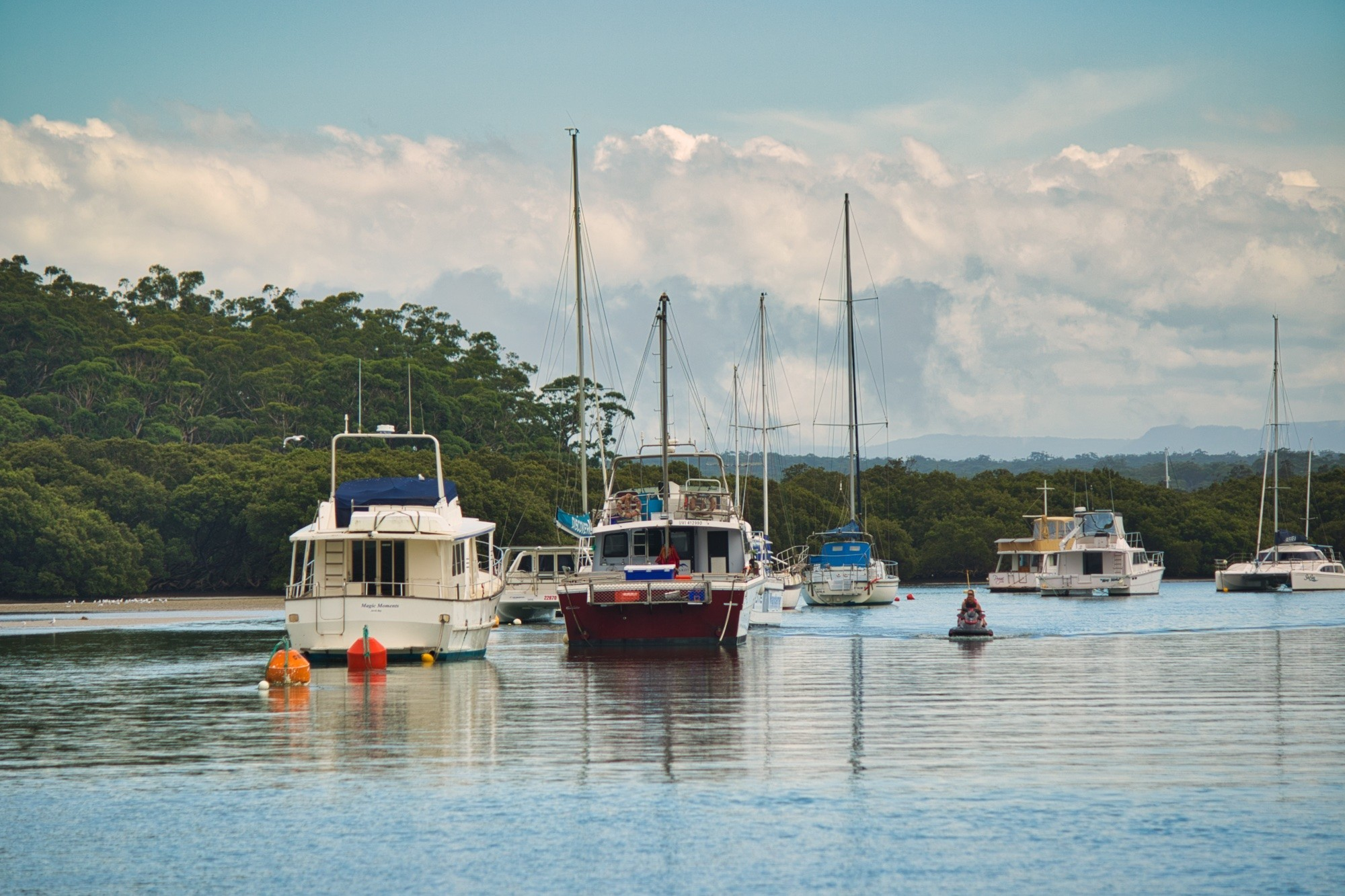 Exploring Jervis Bay with Dolphin Watch Cruises